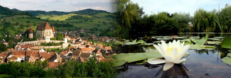 Transylvania & The Danube Delta
